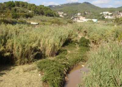 Estudio para la recuperación paisajística del riu Ripoll