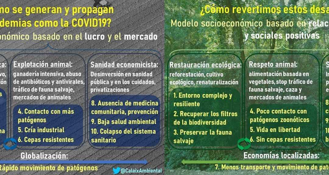 Entrevista en Radio Desvern sobre la relación entre la degradación ecológica y las pandemias