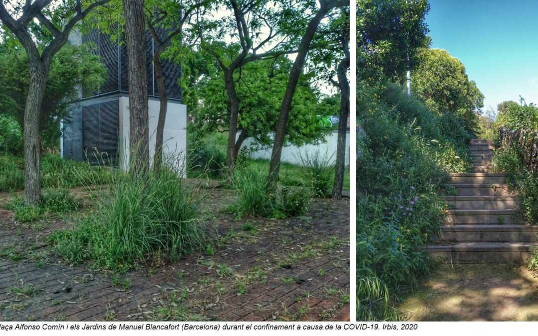 #Rewilding, o la renaturalitzación de la ciudad